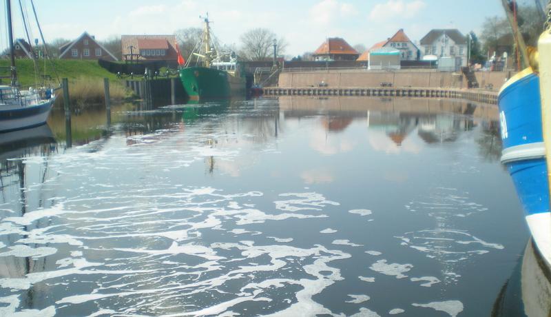 Aktive Stützung des Gewässers durch Sauerstoffzugabe in den Alten Hafen